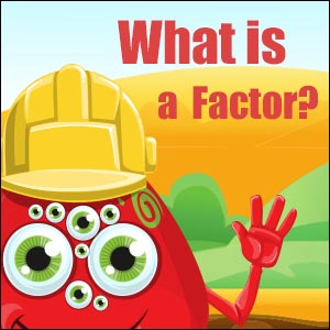 What is a Factor?