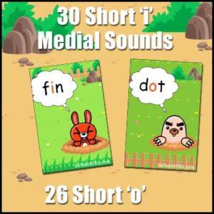 CVC Word Cards - Short 'i' & Short 'o'