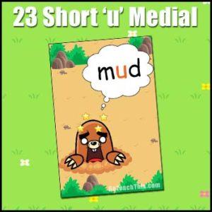 CVC Word Cards - Short 'u'