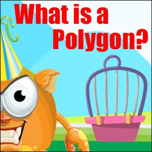 What is a Polygon?